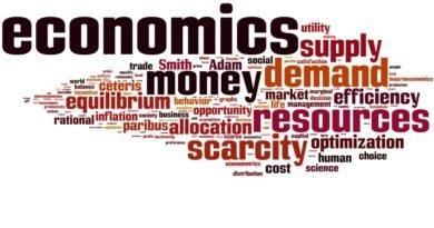 economics class 12