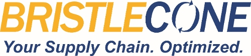 Bristlecone India Limited Logo