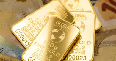 sovereign gold bond review